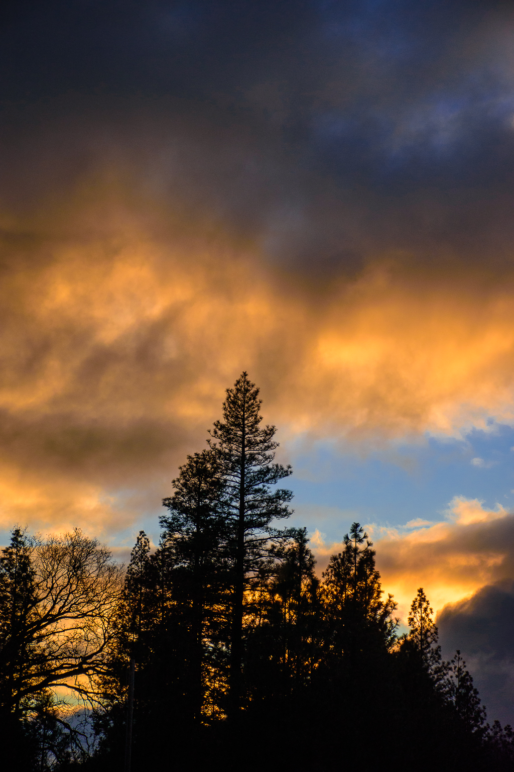 sunset in yosemite national park in the winter colours