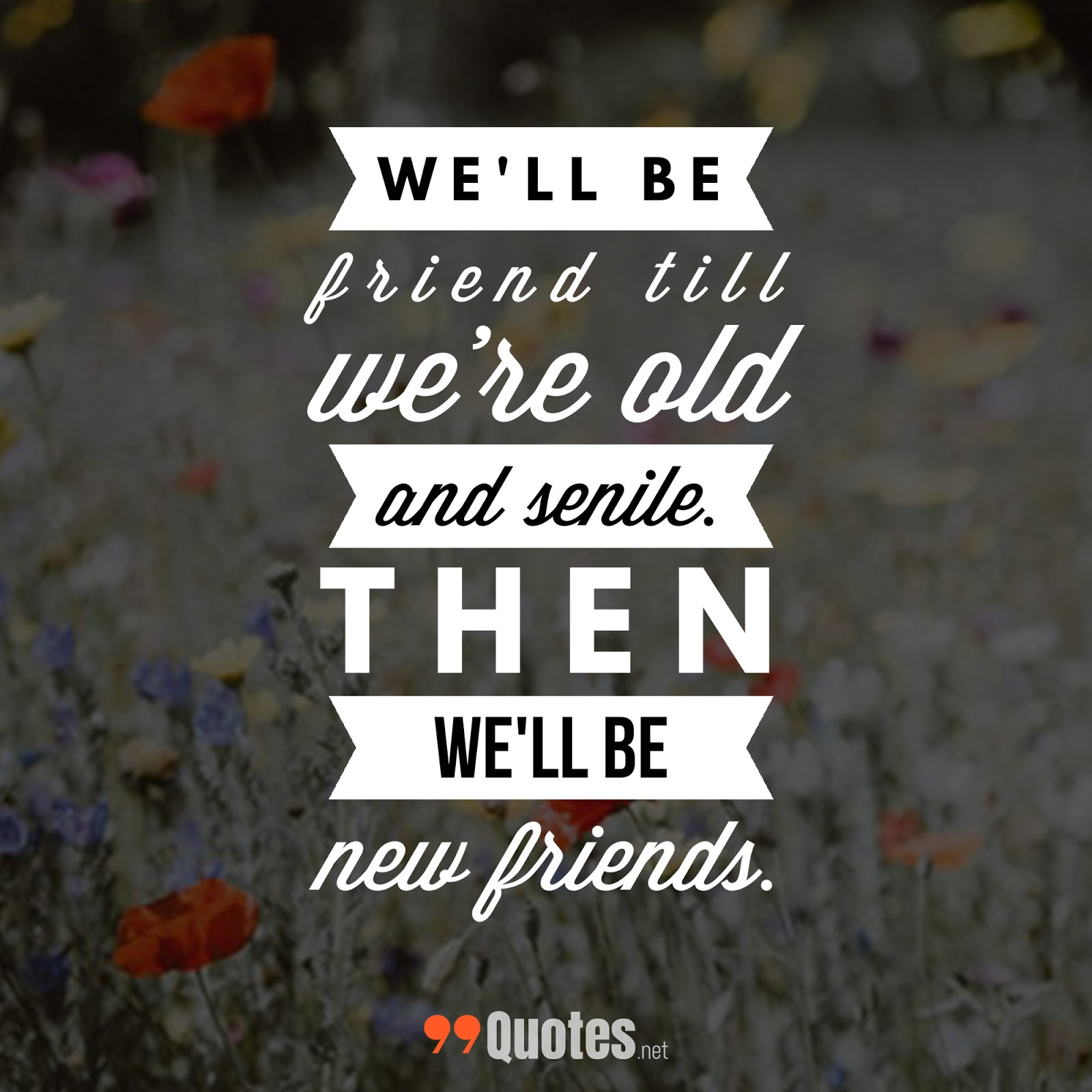 Cute Short Quotes About Family: 99 Cute Short Friendship Quotes You Will Love [with Images]