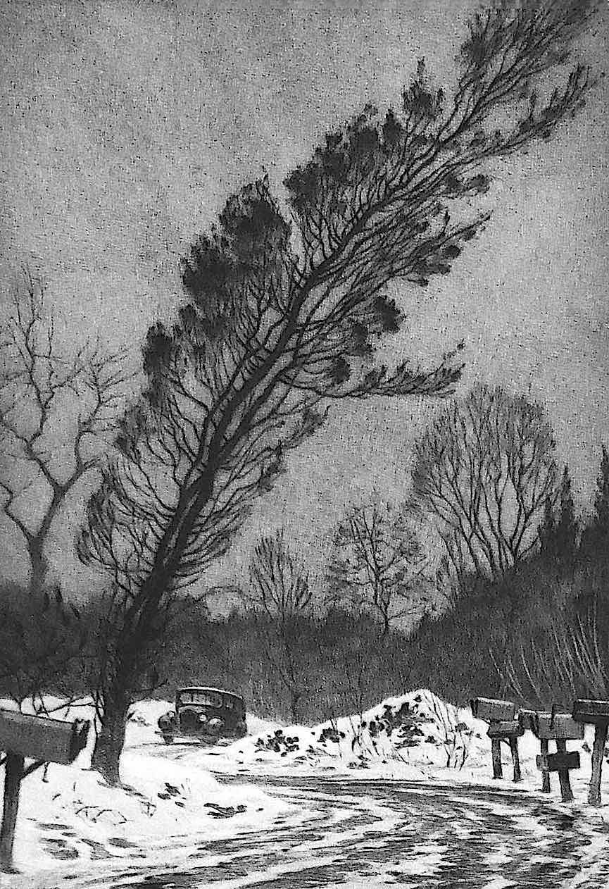 a Martin Lewis print