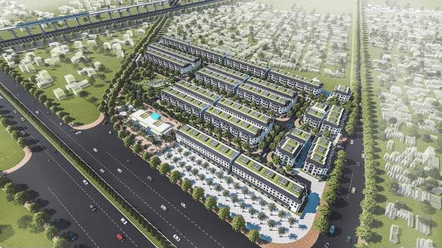 dự án maylandia