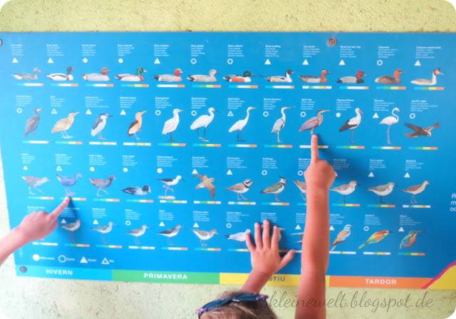 Vogelkarte Naturschutzgebiet