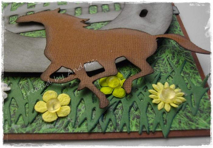 Das Kartenspiel Eine Karte Fur Pferdeliebhaber