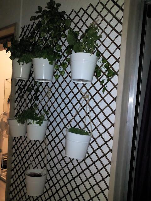 horta apartamento