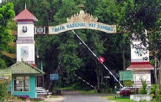 tempat wisata di lampung taman nasional way kambas