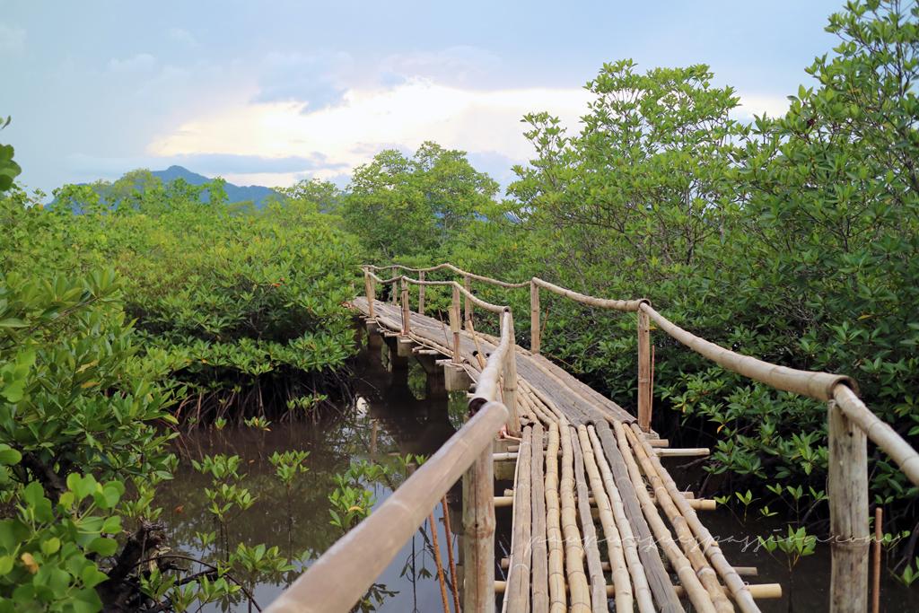 San Juan by the Bay bamboo boardwalk, Sta Rita, Samar