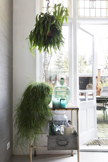 Nat et nature le blog for Decoration maison hollandaise