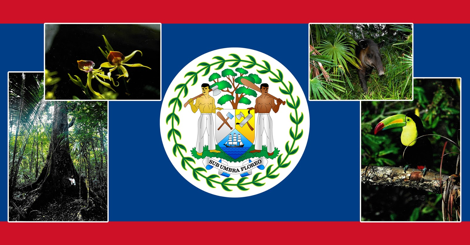 Símbolos Patrios De Belice | Nosotros Unidos Con Belize