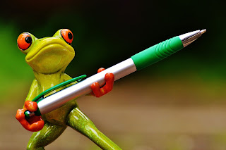 Frog Holding Pen from the Blog Post Five Top Tips to Make You a Better Writer Today from Extra Ink Edits, Writing Consultant offering Editing Services for Writers