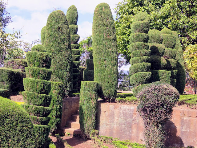 Sculpted shrubbery at the Madeira Botanical Garden