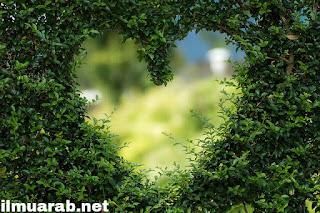 kosakata bahasa arab tentang cinta