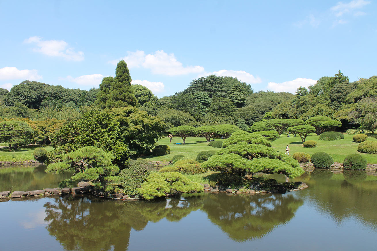 traditional Japanese garden at Shinjuku garden park, Tokyo