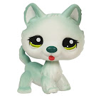 Littlest Pet Shop Tubes Husky (#1563) Pet