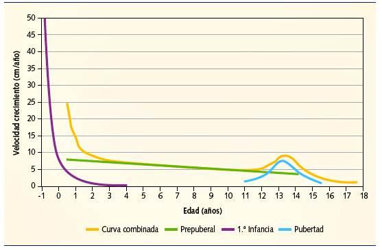 Período post natal hasta los 18 años