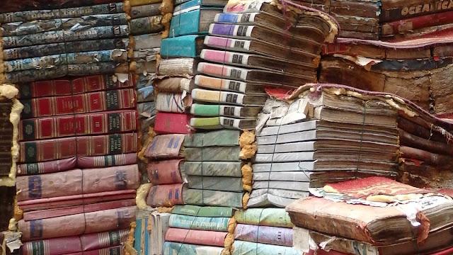 Librairie Acqua Alta - Venise - Lou Darsan