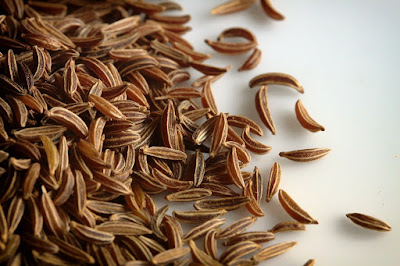 Caraway herb - Top 10 Herbs to Treat and Prevent Cancer