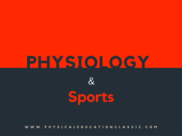 physiology and sports physical education class 12
