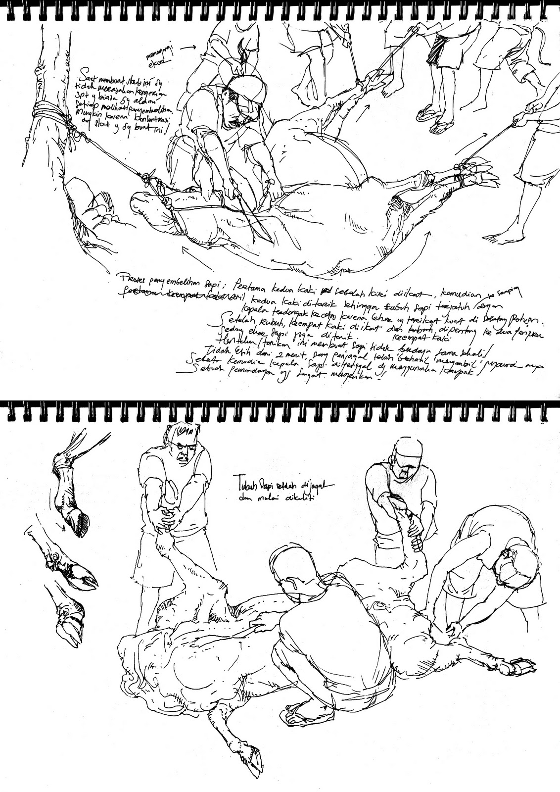 Bloody Sketching