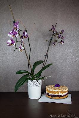 Kokosowe ciasto z jagodami
