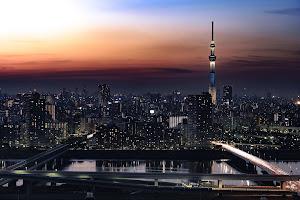 外国人「日本って海外と比較して暮らしやすい国だと思う?」(海外の反応)