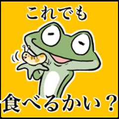 Frog seniors 2.