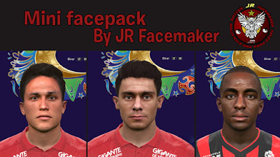 Mini Facepack by JR Facemaker.