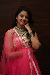 Geethanjali sizzles in Pink at Mixture Potlam Movie Audio Launch 049.JPG