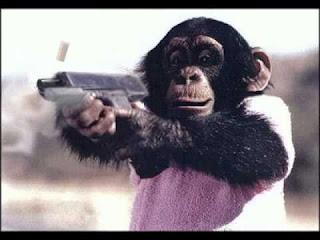 Małpa strzela