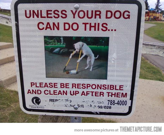 Unless your dog can do this...