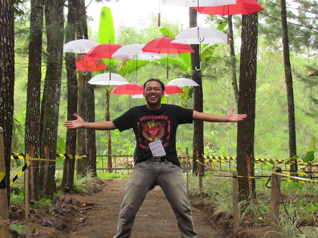 Pesona Wisata Alam Rumah Pinus Sumber Bulu - Songgon
