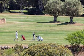Två golfbanor inom behändigt avstånd