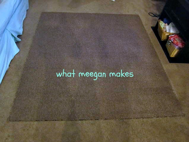 Best of 2012-Shower Curtain Rug