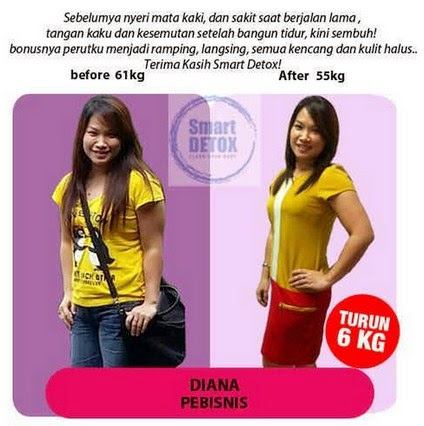 Jual Herbal Pelangsing Badan Smart Detox