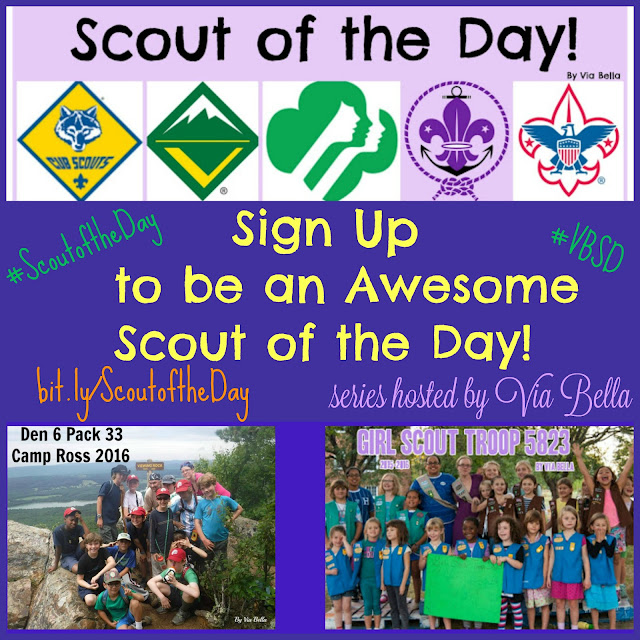 Sign Up to be an Awesome Scout of the Day!, Via Bella, Scout series, Scout of the Day, #ScoutoftheDay #VBSD, cub scouts, girl scouts, boy scouts, venture scouts, sea scouts, scouting, GSCNC, GSUSA, NCAC, BSA, Scouting World wide, scouts world wide, girl scout leader, boy scout leader, sharing is caring, blog series, via bella series, via bella,