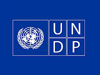 UNDP, Process Manager for Developing the Global