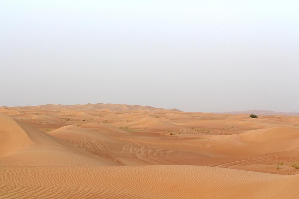peexo dubai desert