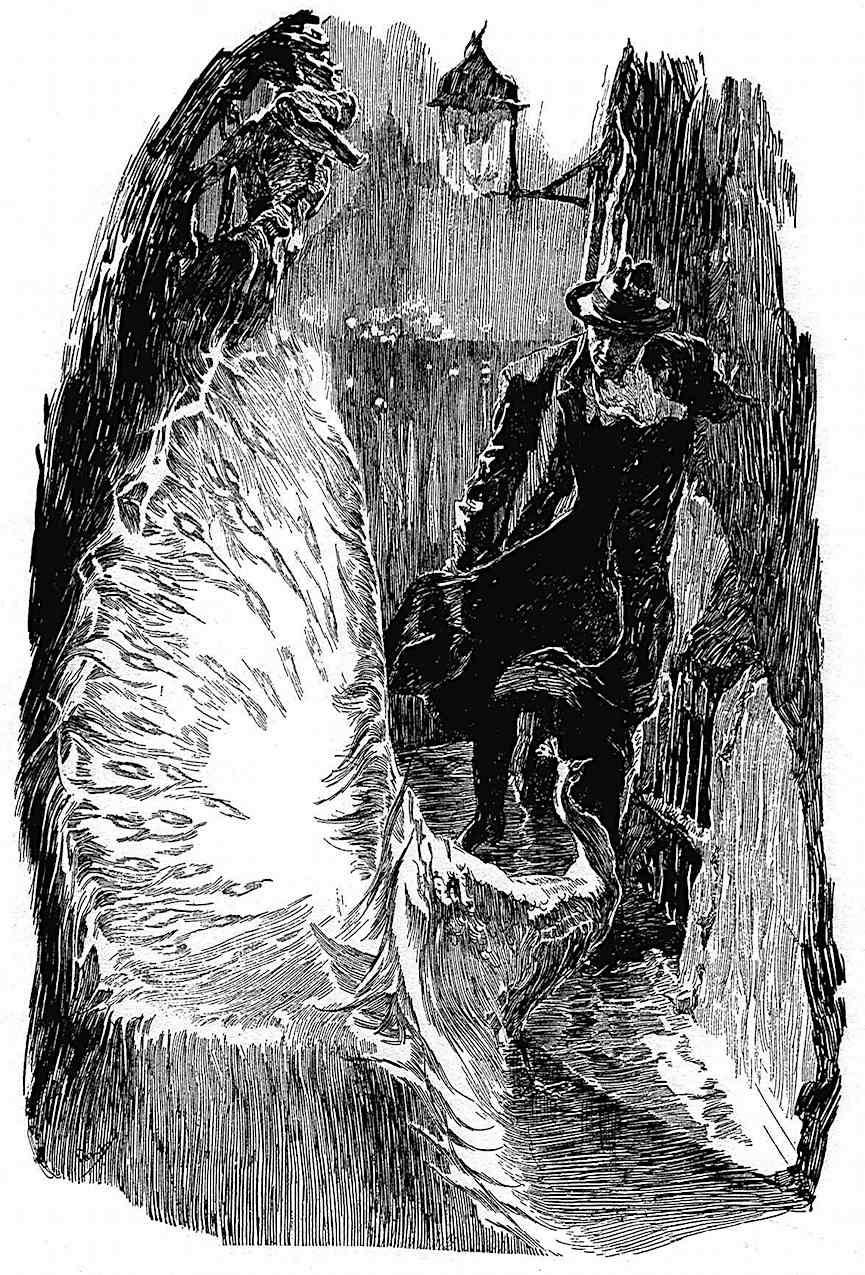a Joseph Clement Coll illustration of a strange bird