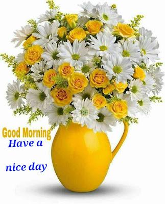 Good -Morning