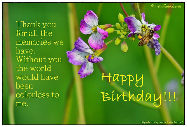 Beautiful Flower, Bee, Birthday Card, Thank you, memories, colorless, Happy Birthday, Birthday