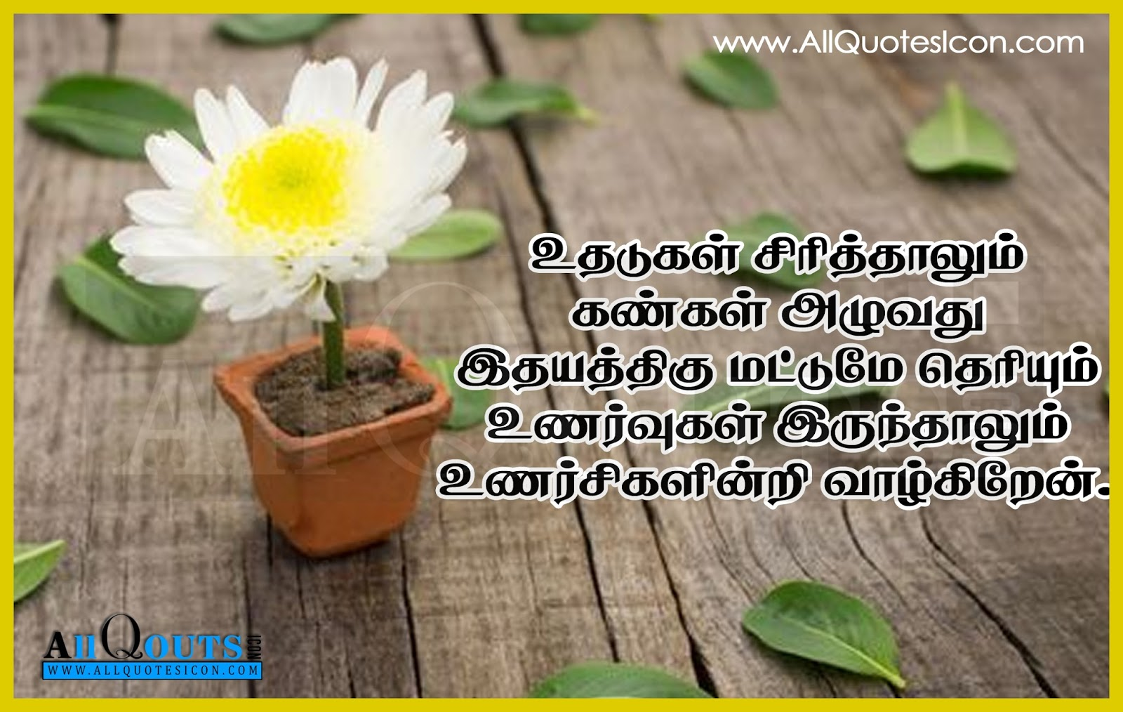 Best Tamil Quotes And Images Wwwallquotesiconcom Telugu Quotes