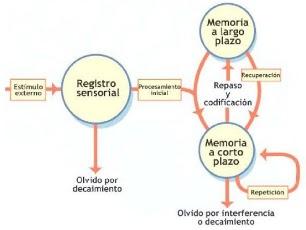 TDAH MEMORIA