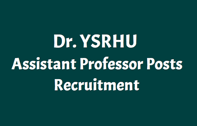 dr. ysrhu assistant professor posts recruitment 2018,dr. ysrhu assistant professors recruitment 2018.dr.y.s.r. horticultural university, venkataramannagudem has issued the assistant professors recruitment