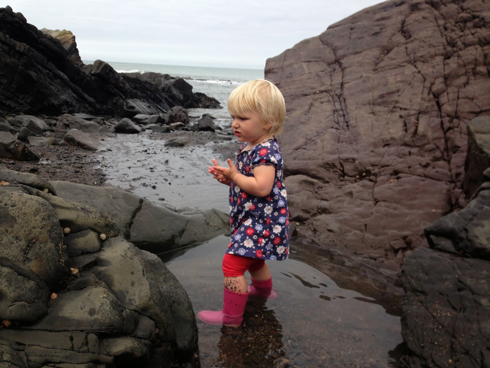 Tin Box Tot rock pooling at Hartland Quay