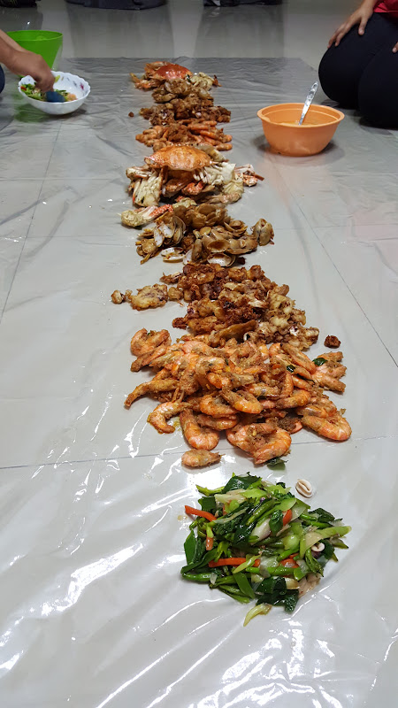 Shell Out