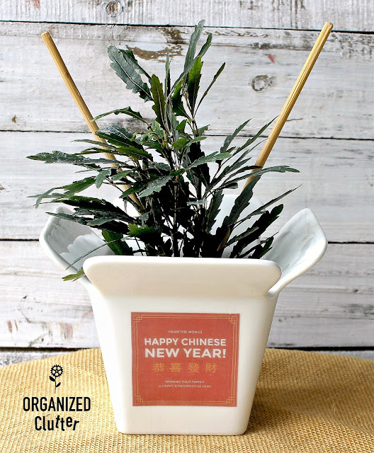 Thrift Shop Chinese Takeout Bowl Planter With Packing Tape Label #Chinesetakeout #funplanter #funflowerpot #packingtapelabel #packingtapeimagetransfer