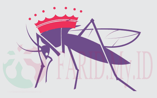 Cerita Nyamuk Yang Kecil Bisa Membunuh Raja