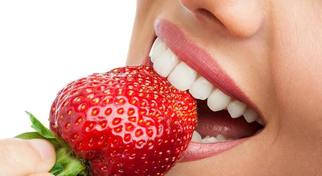 Cavidad oral y sistema digestivo en biologia