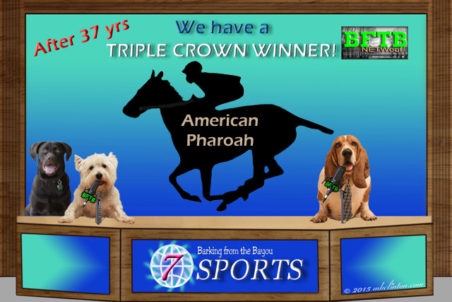 Barking from the Bayou Sports report on Triple Crown winner