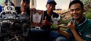 Rawatan Burung Kacer Jawara - Rahasia Burung Kacer (JAGUAR) Juara Gantangan Kampung