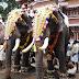 Thrissur Pooram In Malyalam