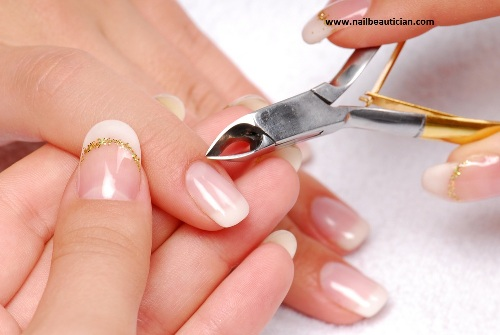 cuticles are important for sealing moisture